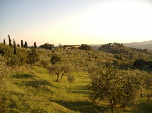 Florence is surrounded by some of the most beautiful countryside in all of Italy